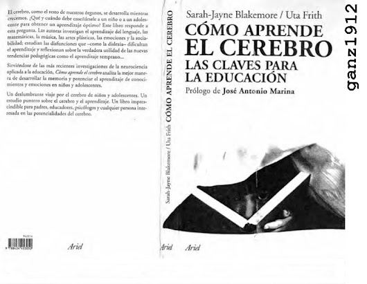 Jaime Rafael Bojorquez Avila