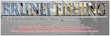 Bruneifishing