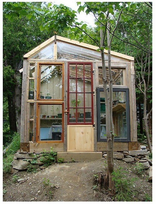 note to self: when are you going to build a green house?