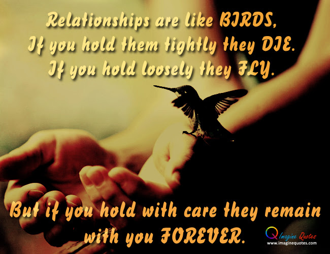 Quotes About Free Like A Bird 23 Quotes
