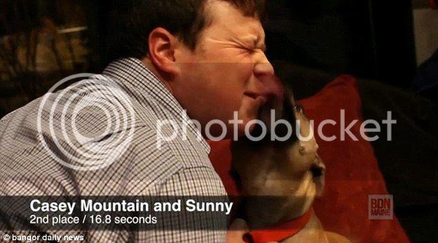 Kontes Berciuman dengan Anjing