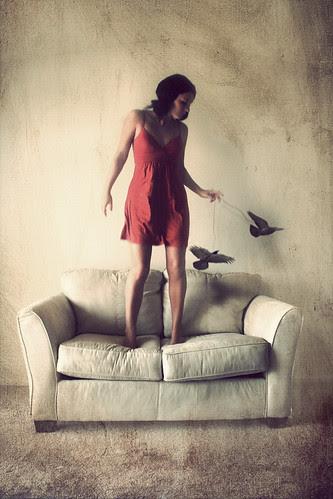 Making Birds Fly