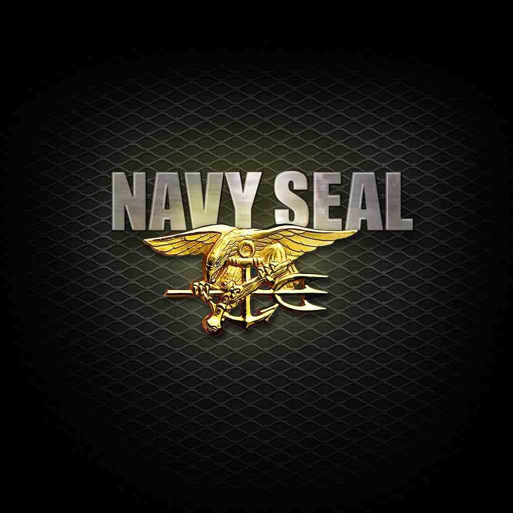 Αποτέλεσμα εικόνας για seals navy