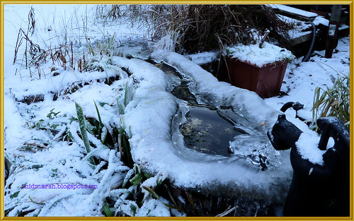 Icy Pond Waterfall