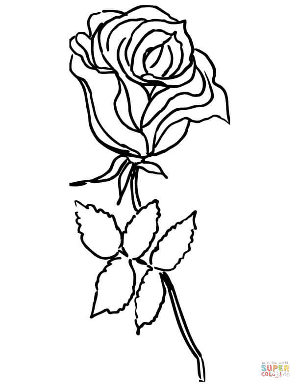 Rose Flower Coloring Page Free Printable Coloring Pages