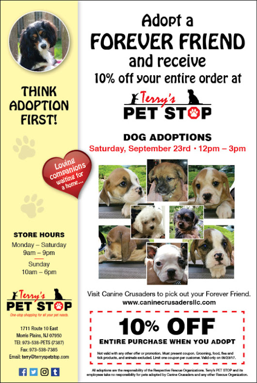 PUPPY ADOPTION at TERRY'S PET STOP - SATURDAY 09/23