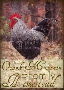 Ozark Mountain Family Homestead