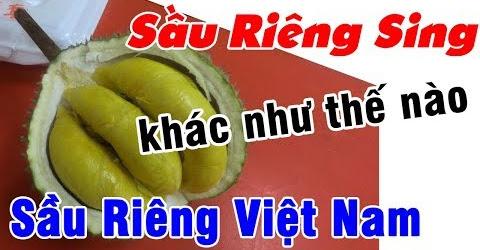 Lên tăng xông với phố SẦU RIÊNG tại Chin Yong Fruits Trading | Du Lịch Ăn Uống Singapore EP 05