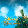 Web Designing offer for Christmas