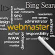 Bing Webmaster Guidelines and the Import of Script