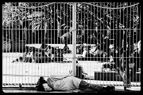 This Is World Is A Gilded Cage .. Man The Nightingale Of Sorrow by firoze shakir photographerno1