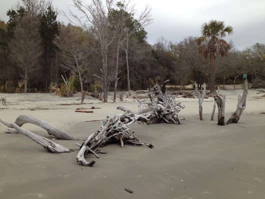 Charleston - Boneyard Beach