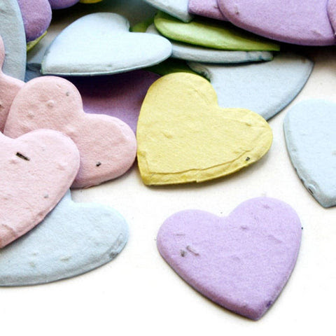 Love Of The Day - Heart Shaped Plantable Seed Confetti