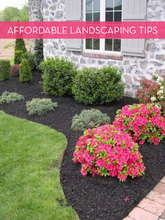 10 Tips For Landscaping On A Budget