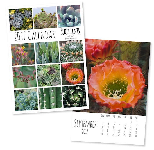 NEW 2017 Photo Calendars and DIY Calendar Templates.