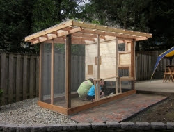 Homemade Chicken Coop - Hen house siding
