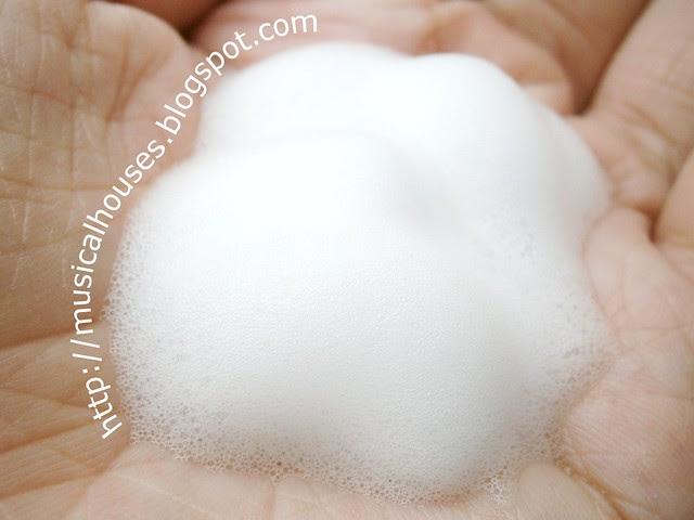 Hada Labo ES Sensitive Skin Foam Wash Foam