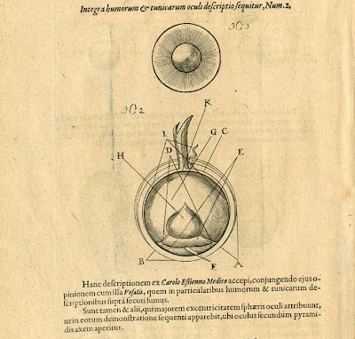 Fludd - Pars IV Liber Primus p300 eye anatomy