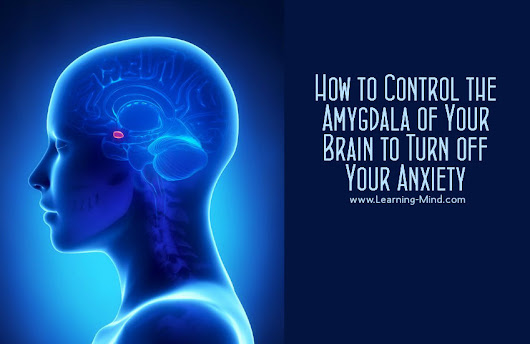 How to Control the Amygdala of Your Brain to Turn off Your Anxiety
