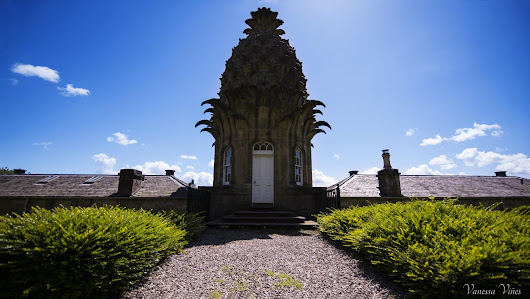 Strange Places in Scotland: The Pineapple