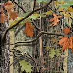 Hunting Camo Beverage Napkins - 42327 - Pack of 18 - Green