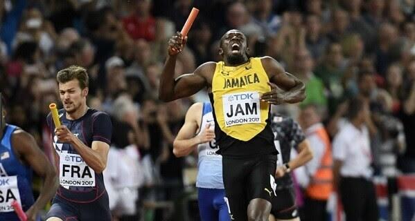 50.-Bolt-19.jpg