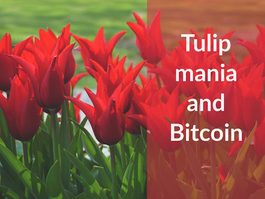 182: Was Tulipmania Just Like Bitcoin? - Money For The Rest of Us -