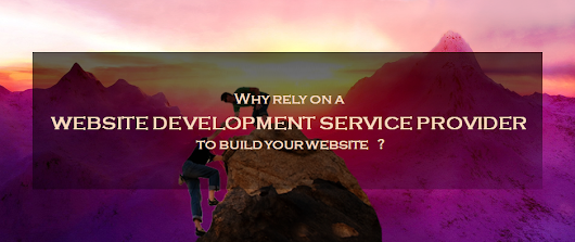 Why rely on a website development service provider to build your website?