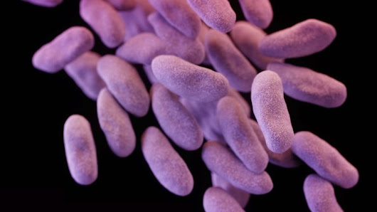 Antibiotic resistance: 80,000 'might die' in future outbreak - BBC News