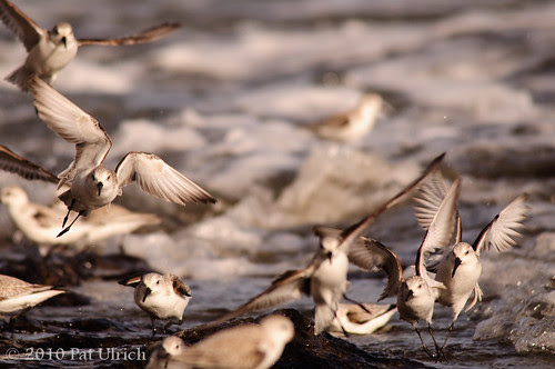 Takeoff and Landing, Chaotic (2of3)