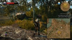 Witcher 3 escondido do mundo 1
