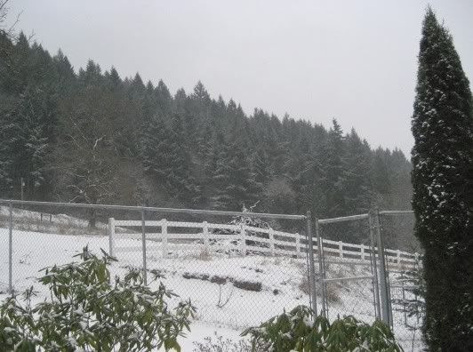 first snow 08