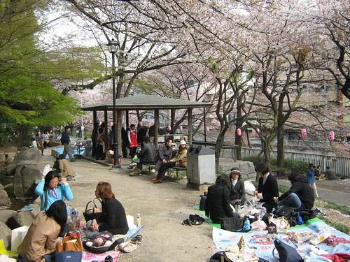 People having picnic at Edogawa park