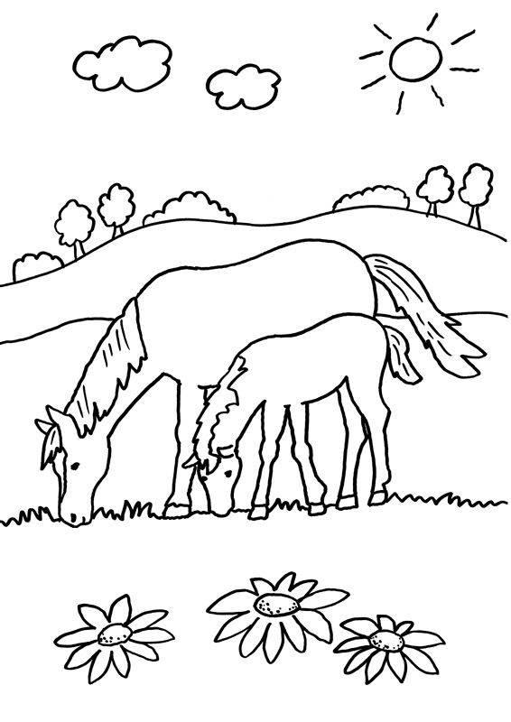 Kostenlose Malvorlage Pferde: Stute und ihr Fohlen ...