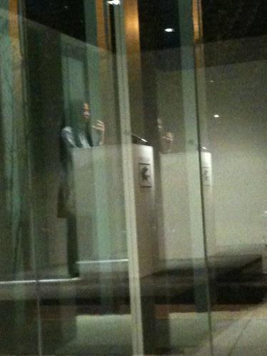 Sharan, in reflection