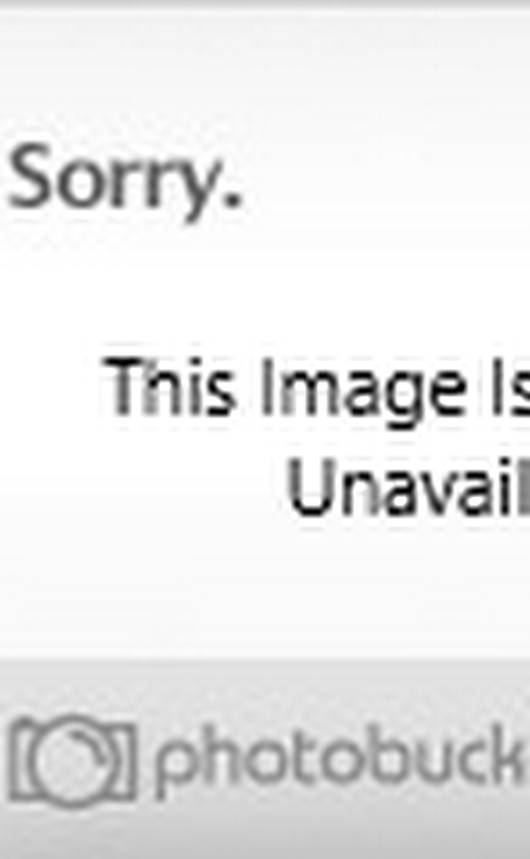 MOSSYJOJO'S PICKS: TOP 6 NO-SEW CRAFTS