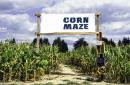 California man arrested after leading police on 2-hour chase through corn maze
