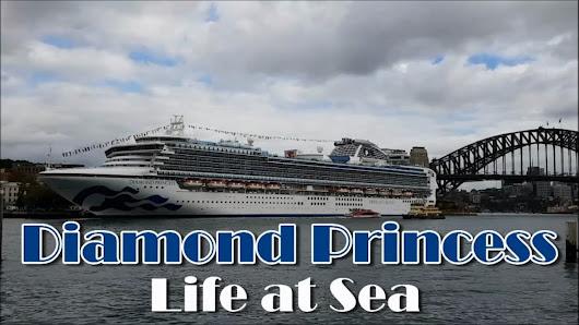 Cruise Buzz Google