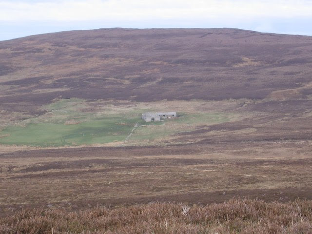 File:Whitemeadows in the heathery hillside on Rousay - geograph.org.uk - 402658.jpg