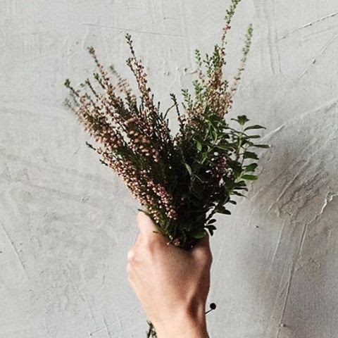 A handful of heather by @louiselj #gathercreativesfall