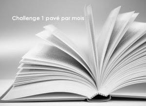challenge 1 pavé par mois by bianca