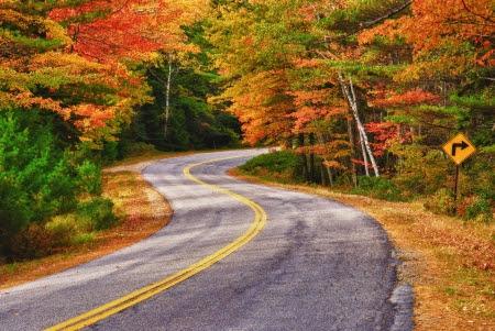 A sinuosas curvas de la carretera a través de los árboles en otoño en Nueva Inglaterra Foto de archivo - 14260834