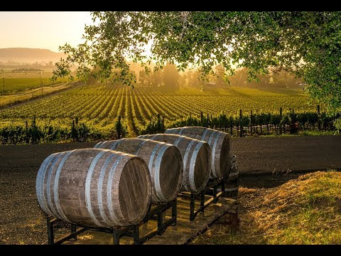 http://luiszehr.skyrock.com/3300359154-Wineries-in-CT-are-Beautiful-Places-to-Visit-this-Fall-of-2017.html