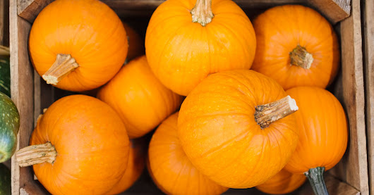Turns Out Pumpkins Are Actually A Fruit, And Humans Know Nothing | HuffPost