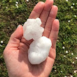 Okay, it hailed. Now what? | Peak Roofing & Construction