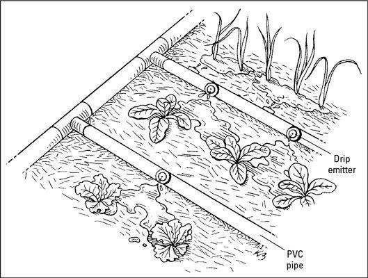 Vegetable Garden Drip Irrigation System