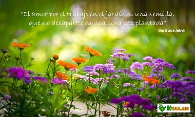 Frases Para Enamorados De La Jardineria Y Las Flores