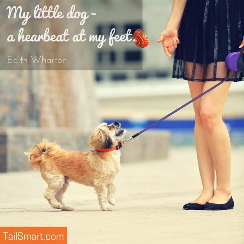 My Little Dog A Heartbeat At My Feet Edith Wharton Quote