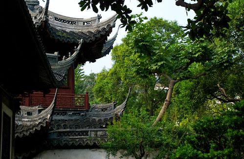 Yuyuan 12