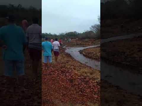 Vídeo: água no leito do rio chegando em Jardim de Piranhas